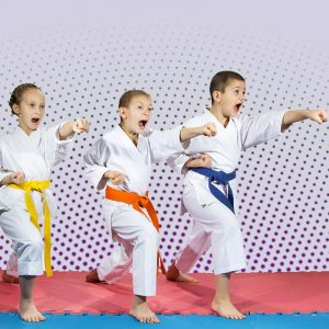 Martial Arts Lessons for Kids in Orlando FL - Punching Focus Kids Sync